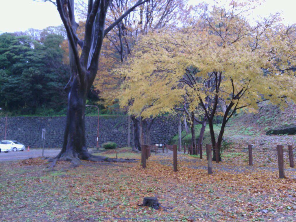 2013-12-01_09.23.12.jpg